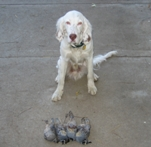 After one of his first hunts in 2006